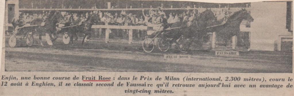 1975 Fruit Rose Prix de Milan