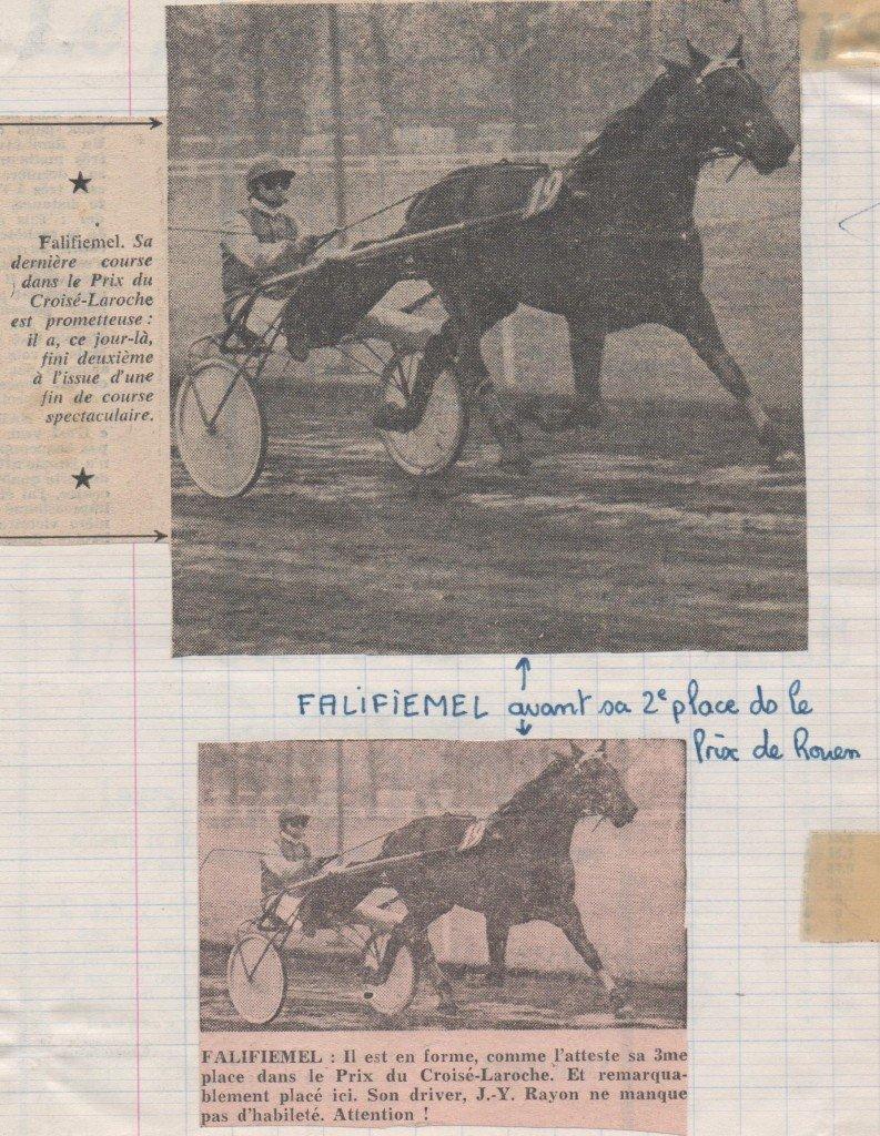 1977 Falifiemel