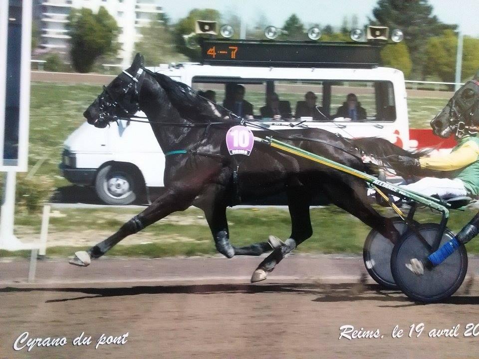 Cyrano du Pont 19 avr 2015 poteau 2