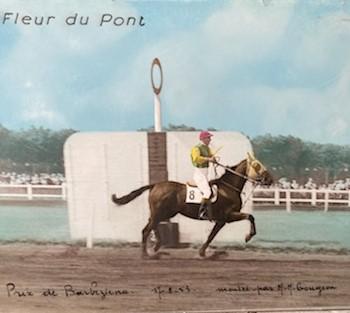 2019 10 28 Fleur du Pont