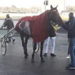 2018-02-22-davidson-du-pont-titiduc-9