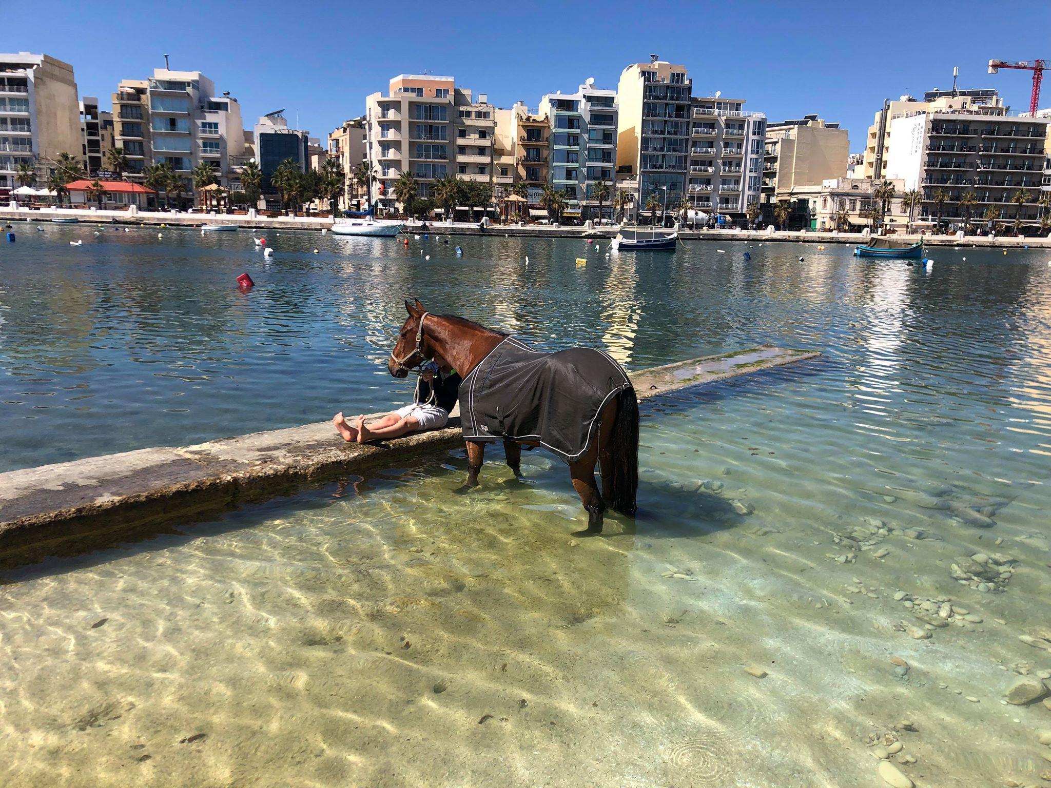 Un Amour du Pont à la plage